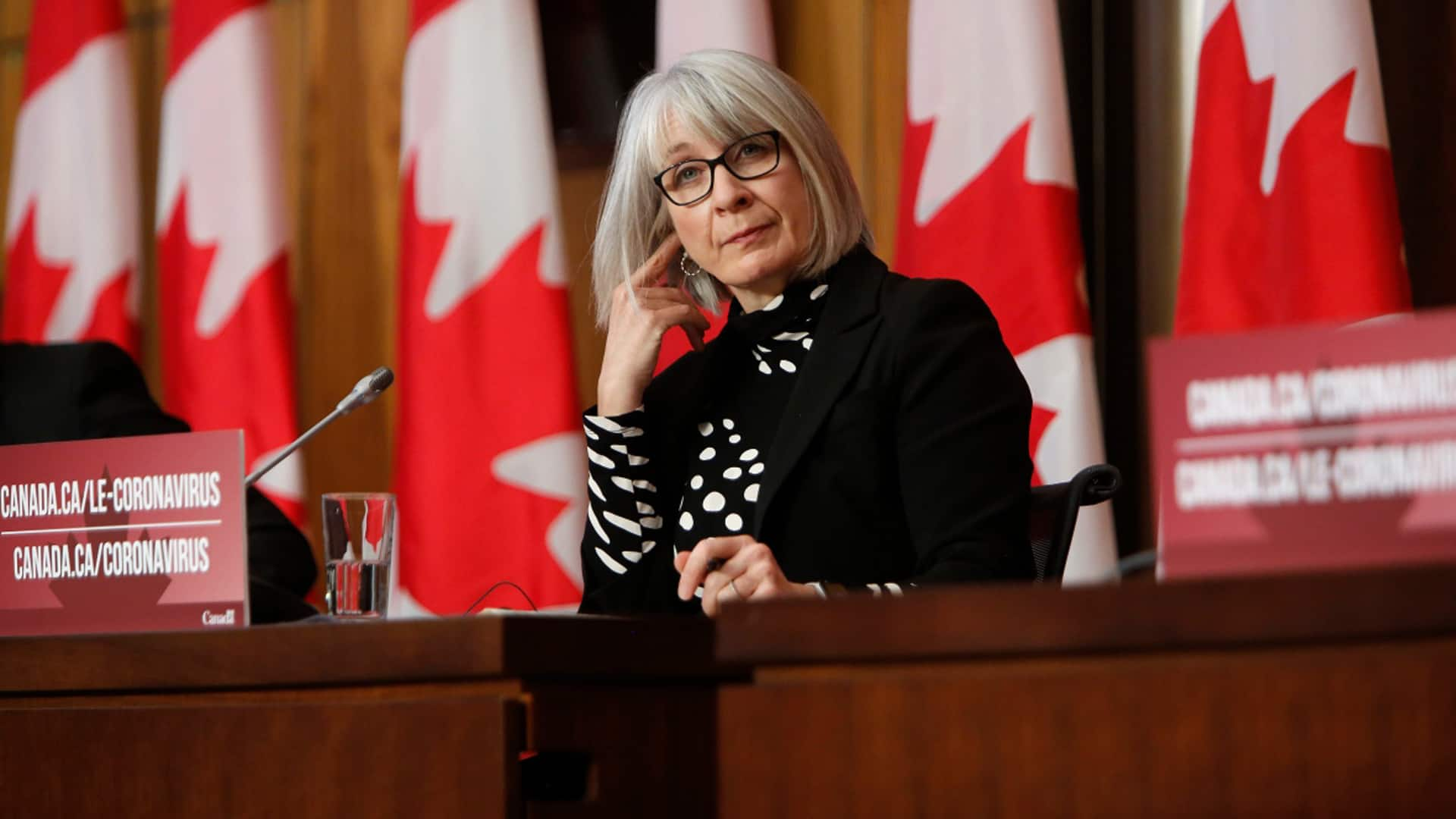 Health minister testifies at Commons Canada-China committee